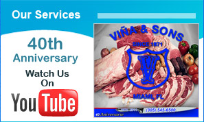 vina and sons services on youtube